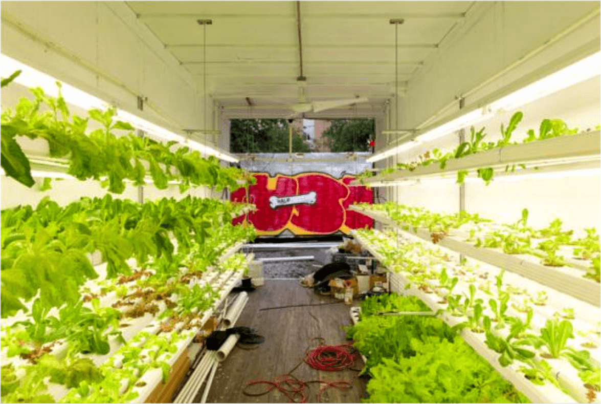 Urban agriculture and shipping containers
